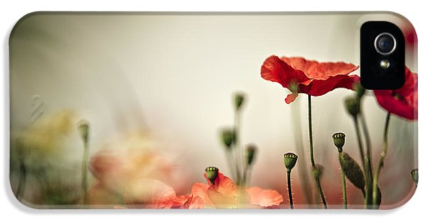 Poppy Meadow IPhone 5 Case by Nailia Schwarz
