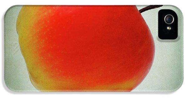 Apple iPhone 5 Case - Apples by Bernard Jaubert