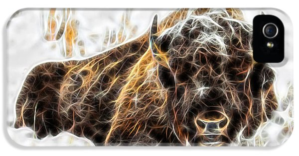Bison Collection IPhone 5 Case