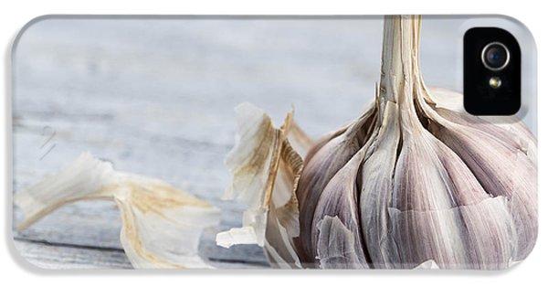 Garlic IPhone 5 Case by Nailia Schwarz