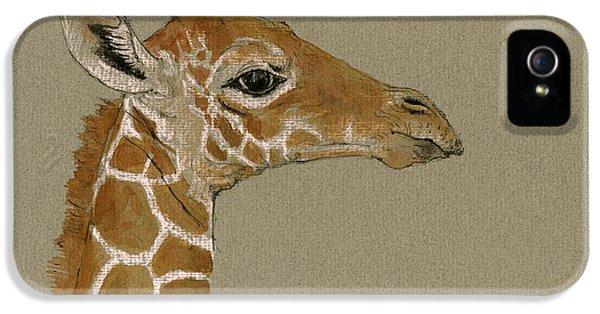 Giraffe Head Study  IPhone 5 Case