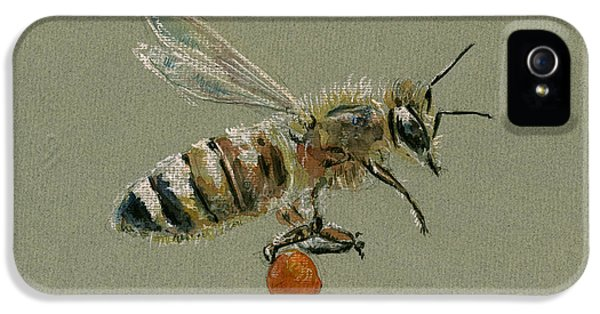 Honey Bee Watercolor Painting IPhone 5 Case by Juan  Bosco