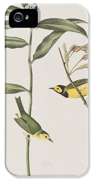 Hooded Warbler  IPhone 5 Case