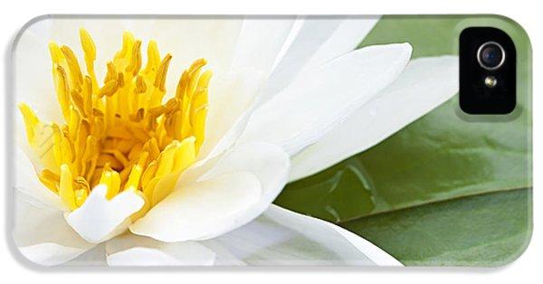 Lotus Flower IPhone 5 Case by Elena Elisseeva