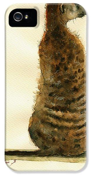 Meerkat Or Suricate Painting IPhone 5 / 5s Case by Juan  Bosco