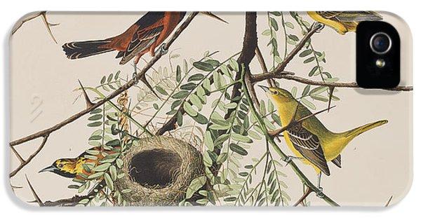 Orchard Oriole IPhone 5 Case by John James Audubon