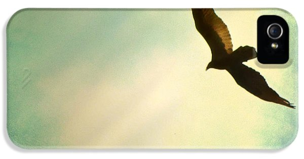 Soaring IPhone 5 Case by Amy Tyler