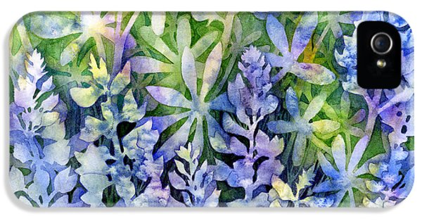 Bluebonnets iPhone 5 Case - Texas Blues  by Hailey E Herrera