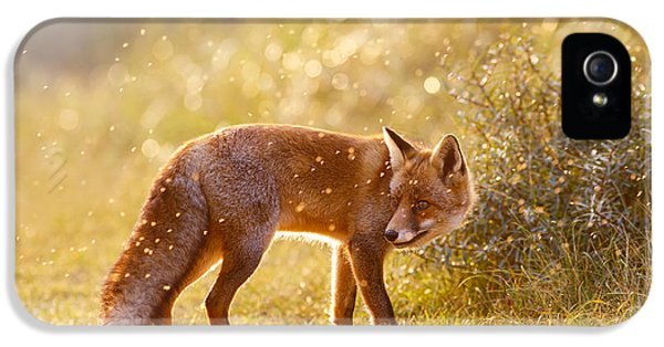 The Fox And The Fairy Dust IPhone 5 Case