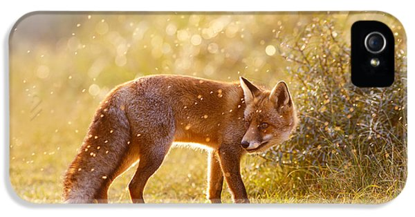 The Fox And The Fairy Dust IPhone 5 Case by Roeselien Raimond