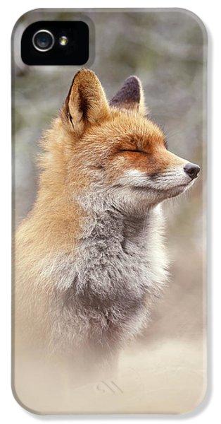Zen Fox Series - Chill Fox IPhone 5 Case