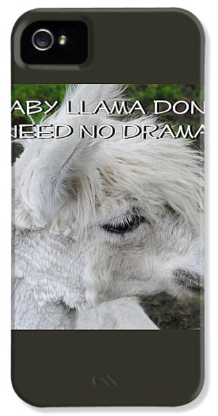 Baby Llama IPhone 5 / 5s Case by Ellen Henneke