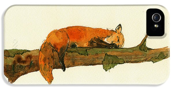 Fox Sleeping Painting IPhone 5 Case by Juan  Bosco