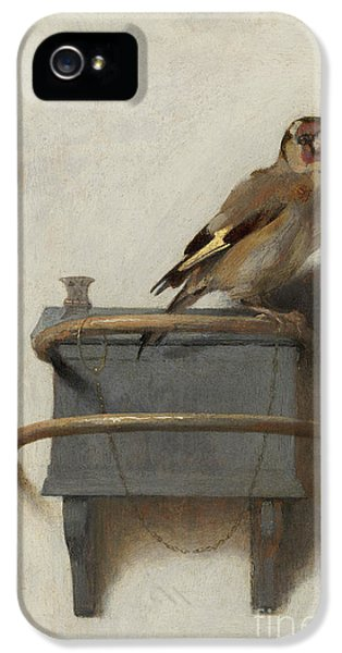 The Goldfinch IPhone 5 Case by Carel Fabritius