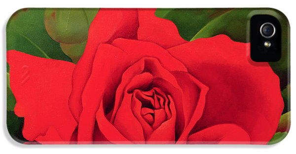 Rose iPhone 5 Case - The Rose by Myung-Bo Sim