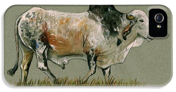 Zebu Cattle Art Painting IPhone 5 / 5s Case by Juan  Bosco