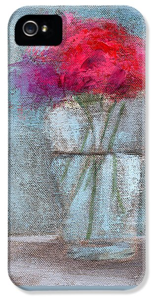 Still Life iPhone 5 Case - Rcnpaintings.com by Chris N Rohrbach