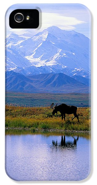 Denali National Park IPhone 5 / 5s Case by John Hyde - Printscapes