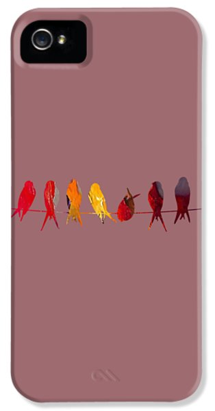Birds On A Wire Collection IPhone 5 Case by Marvin Blaine