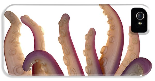 Monster Tentacles Isolated IPhone 5 Case