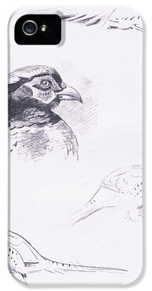 Pheasants IPhone 5 Case by Archibald Thorburn