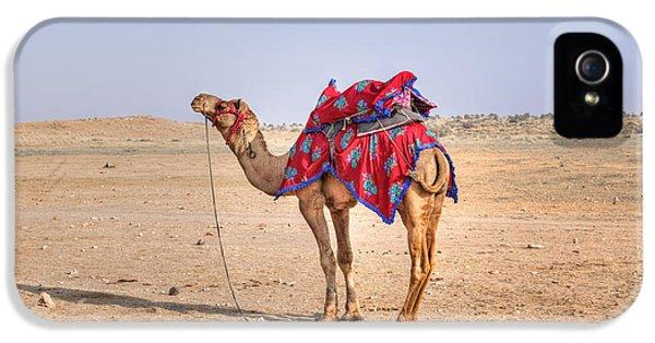 Thar Desert - India IPhone 5 Case