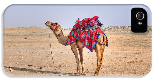 Thar Desert - India IPhone 5 Case by Joana Kruse