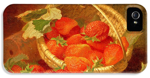 A Basket Of Strawberries On A Stone Ledge IPhone 5 Case by Eloise Harriet Stannard