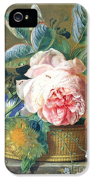 A Basket With Flowers IPhone 5 Case by Jan van Huysum