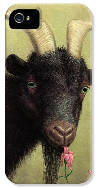 A Black Goat Enjoying A Pink Flower IPhone 5 Case by James W Johnson