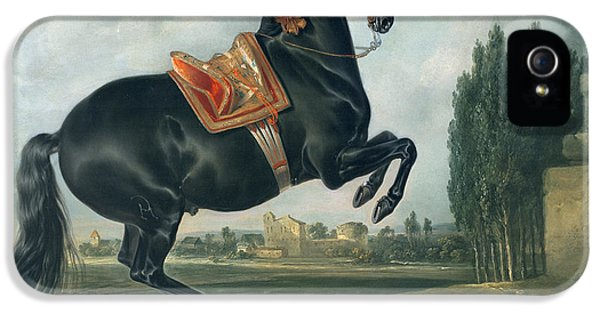 A Black Horse Performing The Courbette IPhone 5 Case