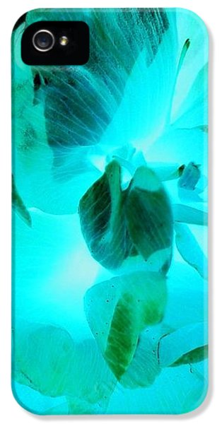 iPhone 5 Case - A Bloom In Turquoise by Orphelia Aristal