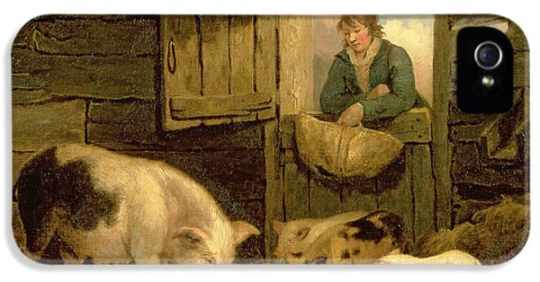 A Boy Looking Into A Pig Sty IPhone 5 Case by George Morland