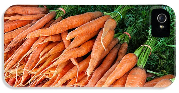 Carrot iPhone 5 Case - A Bunch Of Carrots by Todd Klassy