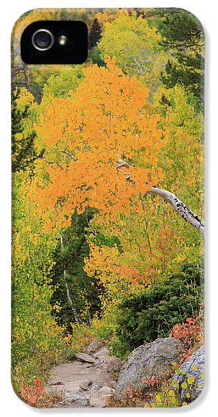 IPhone 5 Case featuring the photograph Yellow Drop by David Chandler