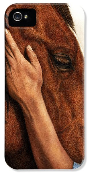 Equine iPhone 5 Cases - A Quiet Moment iPhone 5 Case by Pat Erickson