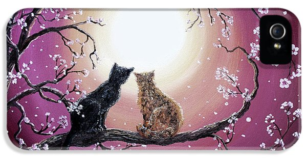 Black Cat iPhone 5 Cases - A Shared Moment iPhone 5 Case by Laura Iverson