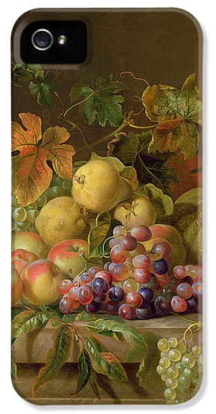 Still Life iPhone 5 Case - A Still Life Of Melons Grapes And Peaches On A Ledge by Jakob Bogdani