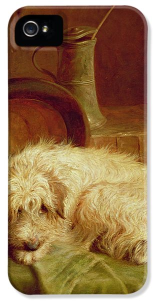 A Terrier IPhone 5 Case