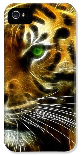 Clemson iPhone 5 Case - A Tiger's Stare by Ricky Barnard