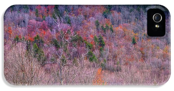 IPhone 5 Case featuring the photograph A Touch Of Autumn by David Patterson