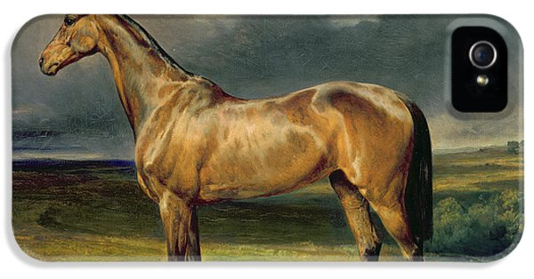 Horse iPhone 5 Case - Abdul Medschid The Chestnut Arab Horse by Carl Constantin Steffeck