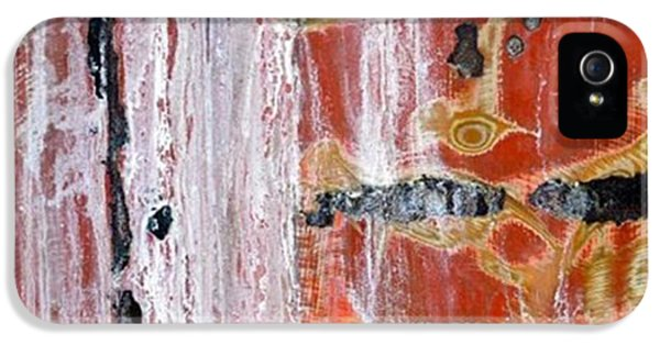 Abstract By Edward M. Fielding - IPhone 5 Case