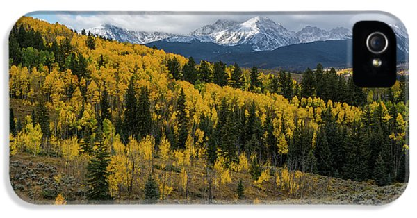 IPhone 5 Case featuring the photograph Acorn Creek Autumn by Aaron Spong
