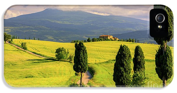 Agriturismo Podere Terrapille IPhone 5 Case by Henk Meijer Photography