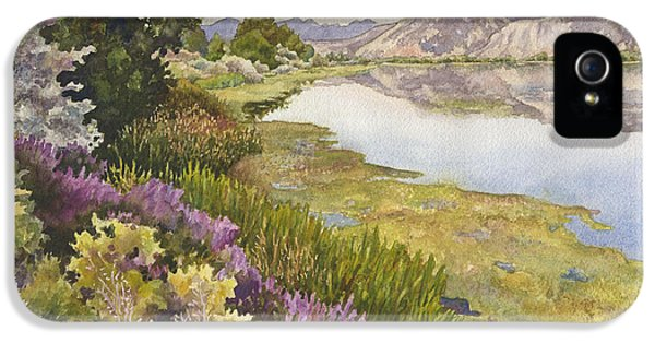 Along The Oregon Trail IPhone 5 Case by Anne Gifford