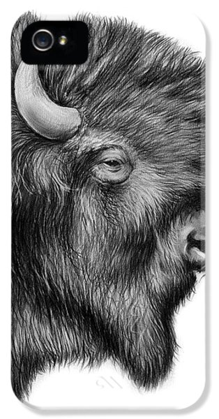 American Bison IPhone 5 Case by Greg Joens