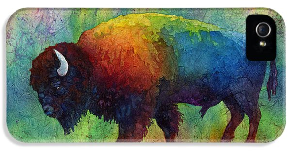 American Buffalo 6 IPhone 5 Case by Hailey E Herrera