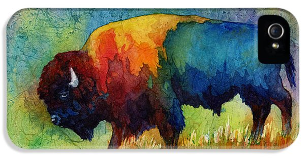 American Buffalo IIi IPhone 5 Case by Hailey E Herrera