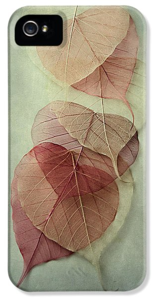 Among Shades IPhone 5 Case by Maggie Terlecki